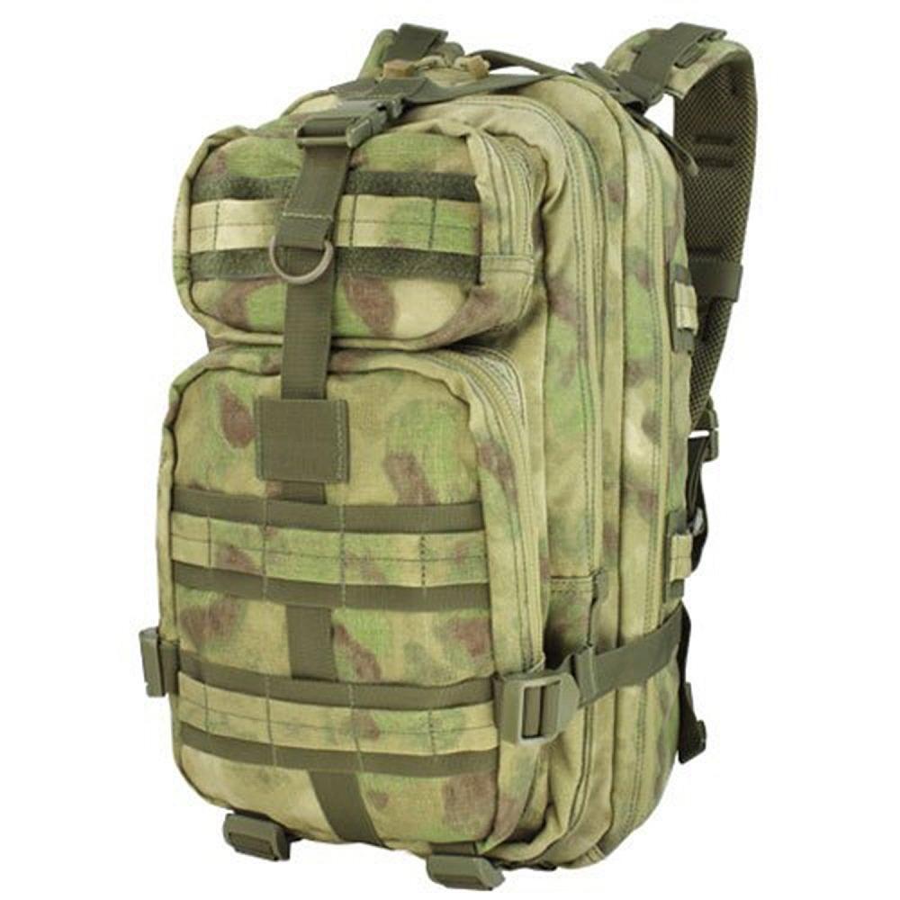 cae585e1e581 Small Assault Pack
