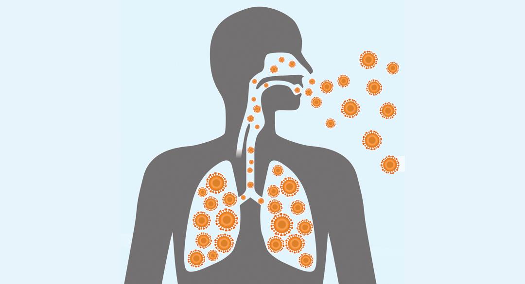 top 10 flu faqs