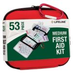 Medium Hard-Shell Foam First Aid Kit (53 Piece)