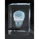 MEDart Glass Blocks Skull