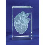 MEDart Glass Blocks Heart