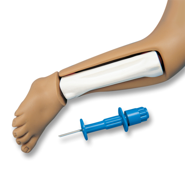 Intraosseous Infusion System with Realistic Tibia Bones
