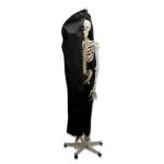 Skeleton Protective Cover (Black)