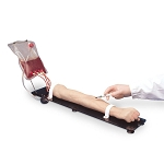 Venous Training Arm