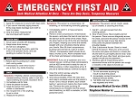 Emergency First Aid Poster in English