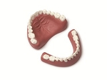 Denture Set - Upper/Lower - Adult
