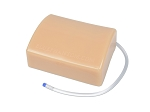 Abscess Drainage Ultrasound Training Model - Standard Warranty