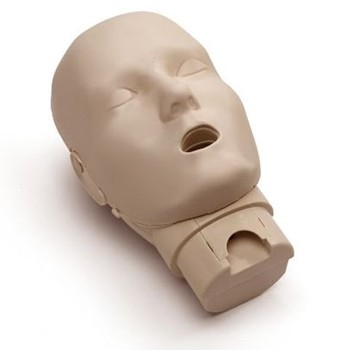 Head Assembly for Prestan Adult Medium Skin Manikin