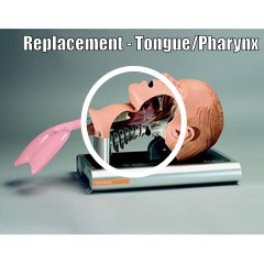 Replacement Tongue/Pharynx for Ambu Intubation Trainer