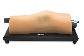 Blue Phantom Musculoskeletal (MSK) Ultrasound Training Model