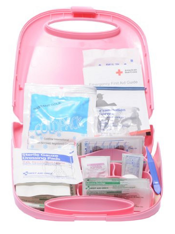 "50 Person BCA ""First Aid For Life"" Kit, Plastic Case"