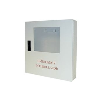 Wall Mount Cabinet with Alarm