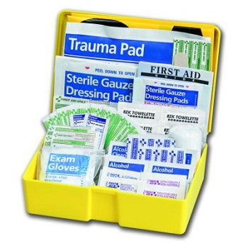 Auto First Aid Kit - 63-Piece (Medium Yellow Plastic Case)