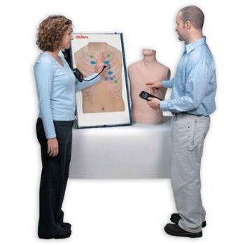Anterior Auscultation Practice Board, Complete