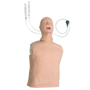 Advanced Airway Larry Airway Management Trainer Torso