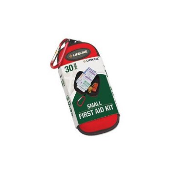 Small Hard-Shell Foam First Aid Kit (30 Piece)