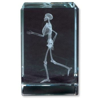 MEDart Glass Blocks Skeleton